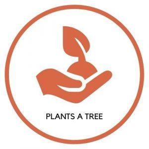 Plants a Tree