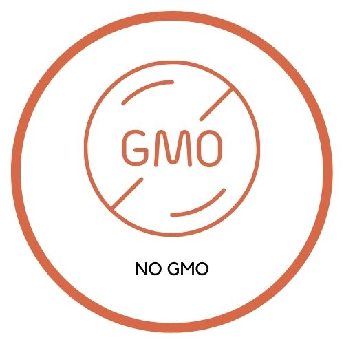 No GMO