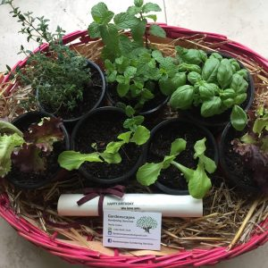 Green Fingers Kit Gold