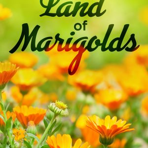 In the Land of Marigolds cover